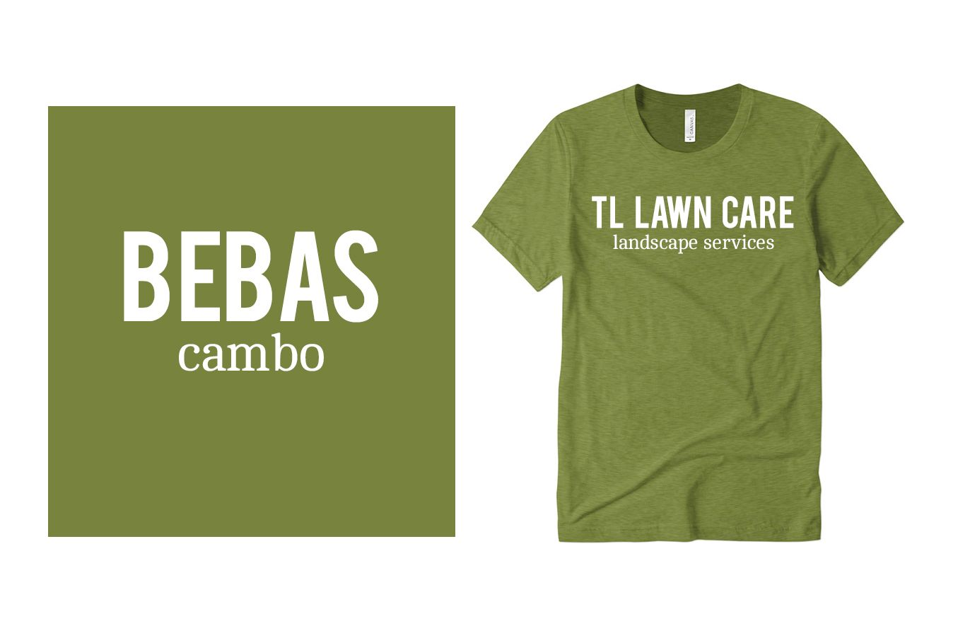 Example font pairing of Bebas and Cambo.