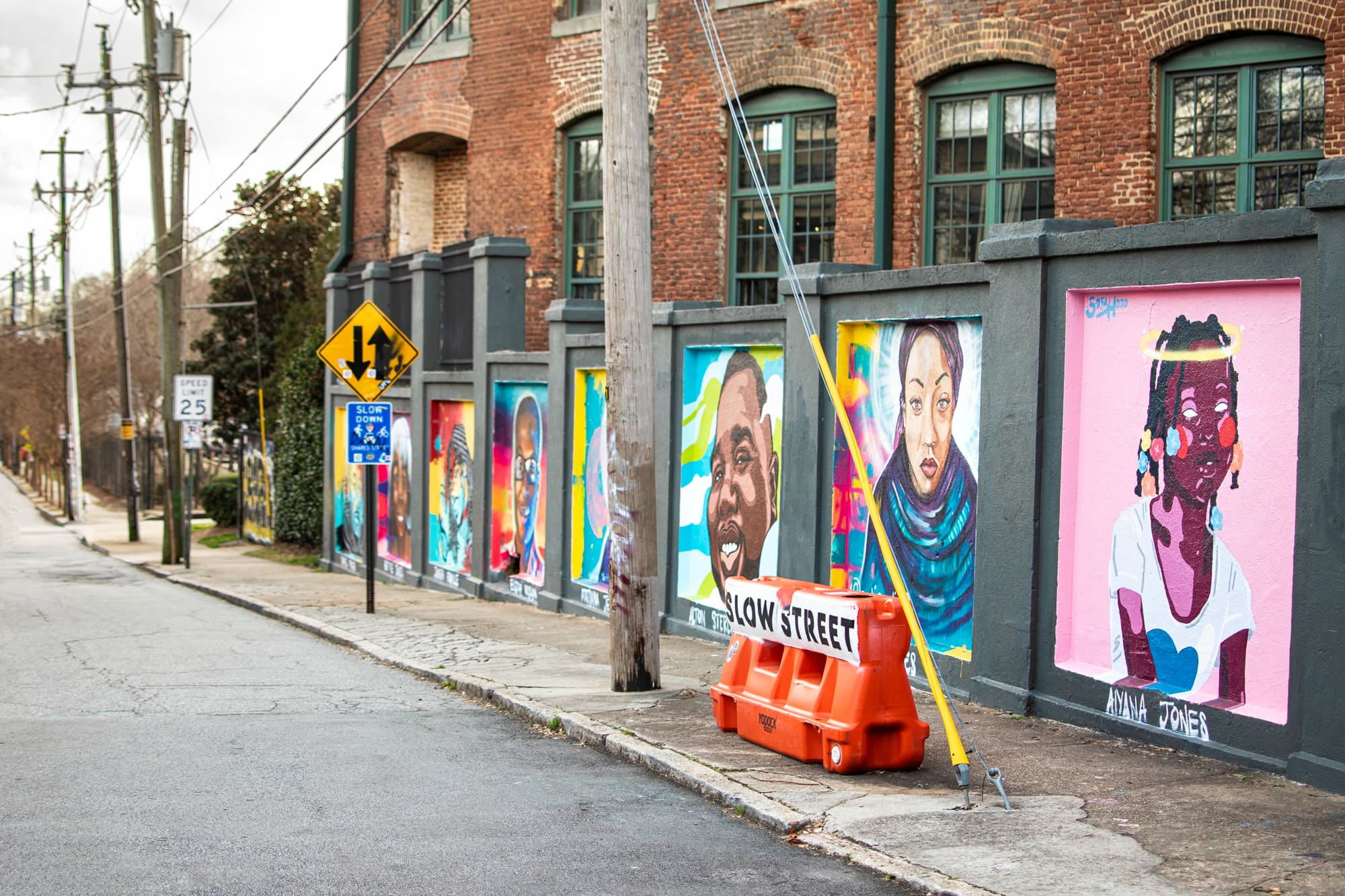 Murals on the streets of Cabbagetown.